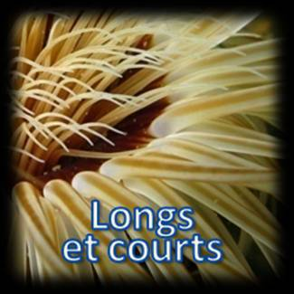 Tentacules courts et longs